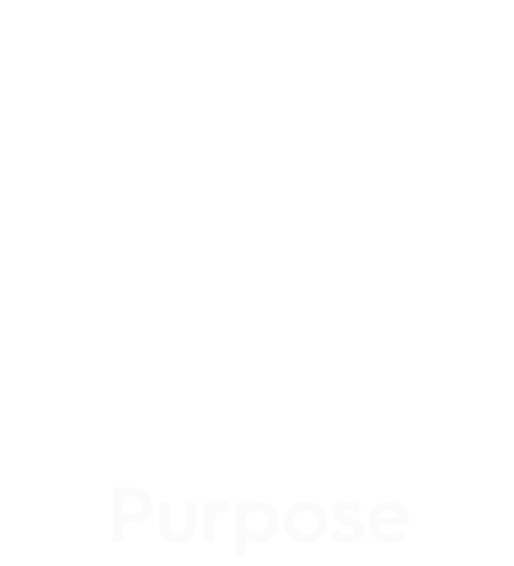 assessment purpose icon