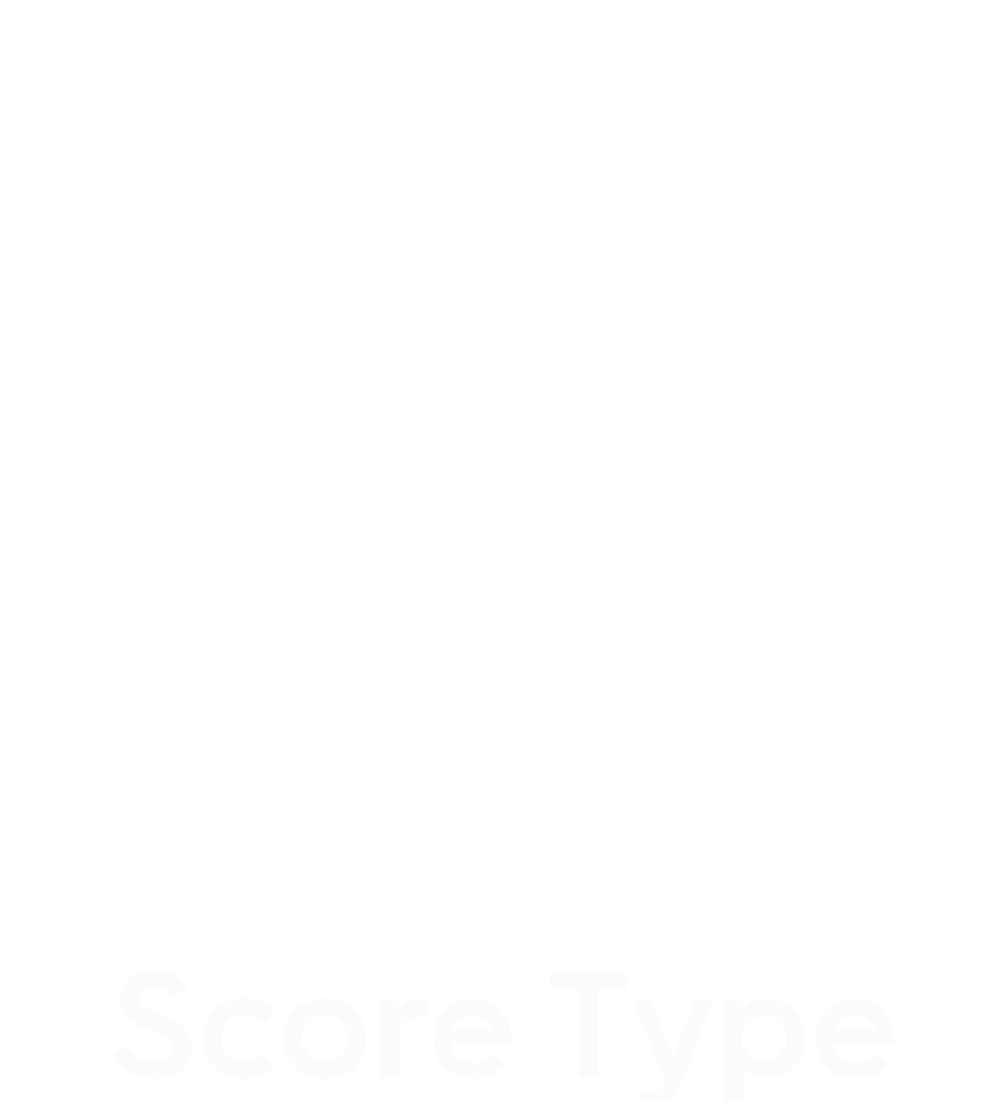 assessment score type icon